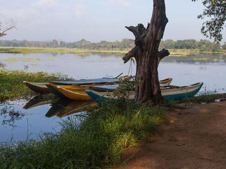 Boat Ride in Sri Lanka